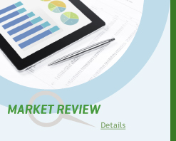 Market Review